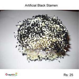 Artificial Black Stamen