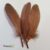 Feathers Pack - brown